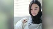 张馨予发文悼念陪伴18年的爱犬:谢谢你陪我长大-  搜狐视频娱乐播报2018年第4季-搜狐视频娱乐播报