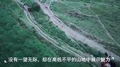 航拍中国:夏日里的祁连山草原,自己都想飞起来了