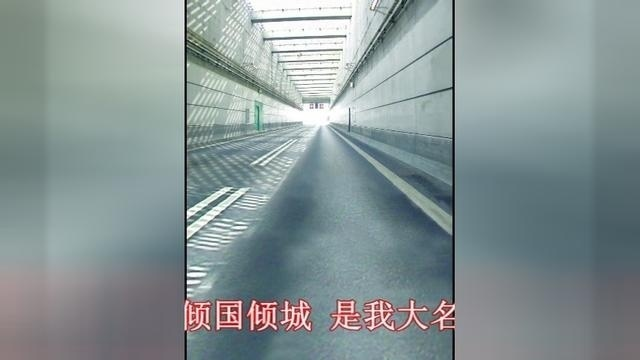 张国荣梅艳芳-芳华绝代
