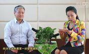 《喜宝和喜妈》段涛老师讲解妊娠期高血压的防控