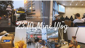 23.10.2019 Mini Vlog /维也纳留学日常/今天是八点半上课的Girl /逛街去买香薰