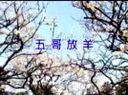 23陕北民歌:五哥放羊  中国民歌精华