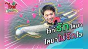 【20200305】泰国综艺 GMMTV《Love White Love Animal》白白与小动物 EP.1(Whitewo)