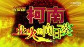 【蛋神电影】怒破奇案《名侦探柯南:业火的向日葵》终极中文预告