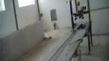 12头白酒灌装生产线酒水灌装机