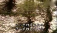 青海小调《小放牛》