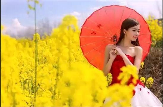 花开情更浓~红蔷薇