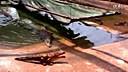 【油库搞笑】遥控玩具鳄鱼www.380bu.com