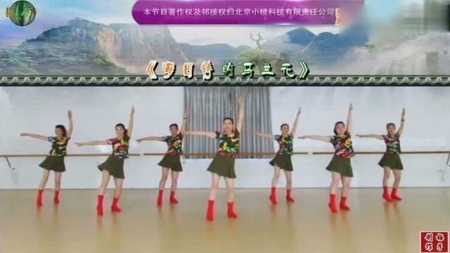 蒙古族歌手旭日新歌《海日特的马兰花》刘荣天团动感演绎
