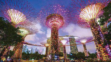 新加坡新地标,宛如阿凡达世界!