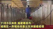 福建莆田查出非洲猪瘟疫情,已启动应急响应机制