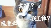 现实一猫(极度烧脑)和自己来一场深度对话,发现那个未知的你!