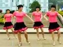 广场舞视频教学 崔子格老婆最大