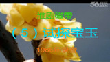 淮剧05试探宝玉 06熙凤献策(施蕾、梁锦忠、周凤英)9:06