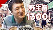 带你见识云南1300元一斤的野生菌!比头还大的见手青!怪不得云南人每年都要吃