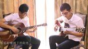 《午后柠檬树下的阳光》双吉他翻弹 DEPAPEPE