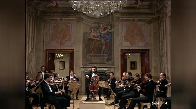 海顿第一小提琴协奏曲慢板大提琴改编版|麦斯基 维也纳交响