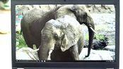 联想ThinkPad P70评测视频