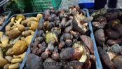 去云南最大的野生菌市场买菌子是什么样的体验?