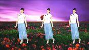 抒情32步广场舞《转身遇见爱》赵真演唱,伤感又好听!