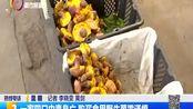 一家四口中毒身亡 购买食用野生菌需谨慎