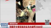 游客在大理洱海洗车洗衣被罚2000元