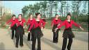 我从草原来广场舞 学广场舞分解动作来www.genwoxue.tk跟我学