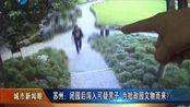 苏州:闭园后闯入可疑男子为拙政园文物而来?