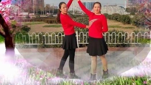 百度视频搜索_广场舞 双人舞 十四步
