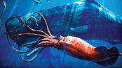 它们是能捕杀鲸鱼的深海怪物!却出生一年后就老死病亡 深海能与鲸鱼抗衡的怪物