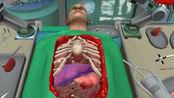外科风云疯狂的手术肝脏掉了游戏