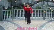 广场舞食尚玩家变形计 :一万个对不起 舞蹈教程