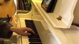 薛之谦《暧昧》钢琴弹唱