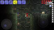 【泰拉瑞亚】肉后档原人物#7 锤爆光头,探索地牢;驱逐哥布林,解救电工妹与哥布林工匠;制作魔晶风暴