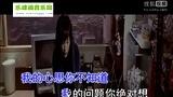 孙菲繁-无可救药的思念