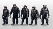 【八月看大片】末世来袭人类沦为监下囚《猩球崛起2黎明之战》
