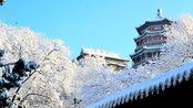 颐和园一下雪就成了清漪园