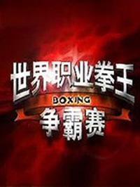 世界职业拳王争霸赛