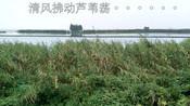 【行者毅凌 迷你Vlog】江南水乡柔情触动西北汉 008-动旅游Vlog-动旅游x背包去环游
