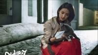 《老男孩》1-45集林依晨和老男孩刘烨恋爱了