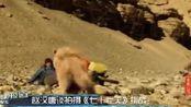 《七十七天》导演赵汉唐穿越无人区不可怕,宣发无门才最绝望