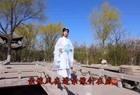 一首《伍佰China Blue - 树枝孤鸟》真好听