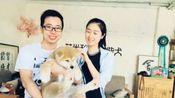 真爱无限 米家大院の买家秀#艾米秋田犬柴犬繁育基地