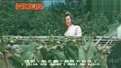 电影《楚留香之桃花传奇》(孟飞 杨钧钧)片段