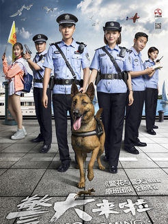 警犬来啦 普通话