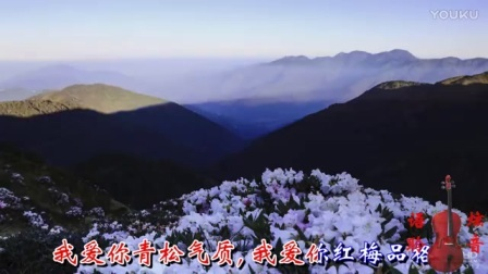 殷秀梅《我爱你中国》(80年代流行歌曲)