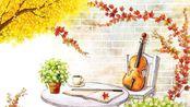 石川绫子【Ayako Ishikawa】 —— 最唯美的小提琴现场音乐演奏作品系列……