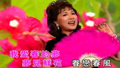 刘凤屏《我爱春的梦》,港台经典老歌,珍藏原版MV