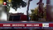 陕西咸阳:消防员空中作业 摘除树上马蜂窝
