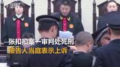 【陕西】张扣扣案一审判处死刑 律师:每个人都不是孤岛-社会现场-新视点